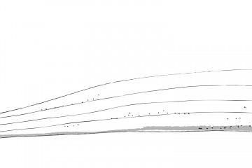 Das Rennen geht los. Illustration: Jamie Niederer.